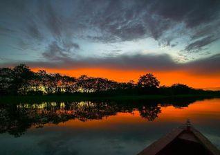 The-deep-Amazonian-jungle-Pucallpa-Puerto-Maldonado-Pariwana-hostel-03